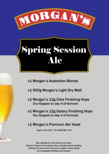 Spring-Session-Ale
