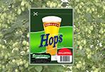 Hallertau Hops